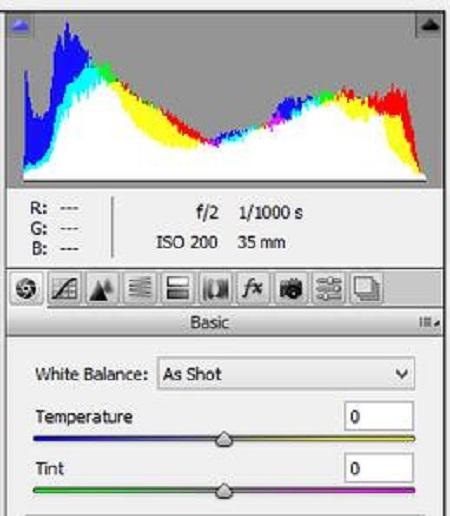 فیلتر خام دوربین در فتوشاپ, فیلتر camera raw در فتوشاپ, کاربرد فیلتر خام دوربین در فتوشاپ